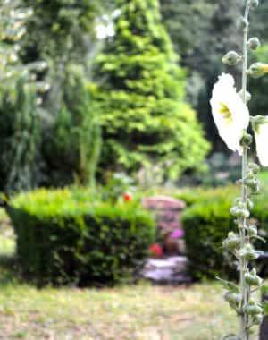 beerdigungskosten friedhof