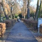 Friedhofszwang